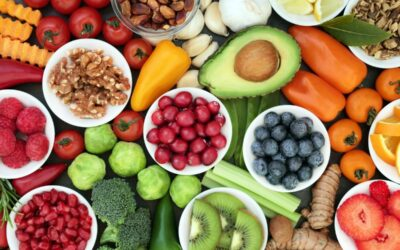 La importancia de la nutrición como elemento fundamental para fortalecer el organismo
